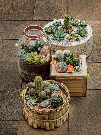 Крутые домашние сады, которые можно создать собственноручно