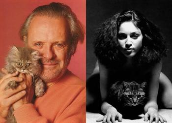 30 ретро-фотографий знаменитостей, позирующих с любимыми кошками