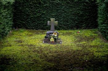 Уйди экологично! Какой вид погребения лучше для природы?