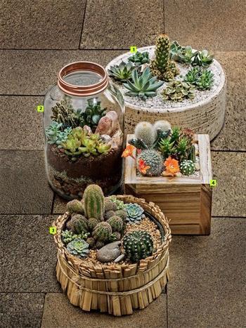 Домашние сады, которые можно сделать своими руками