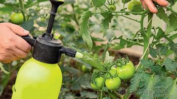 Янтарная кислота – польза для растений