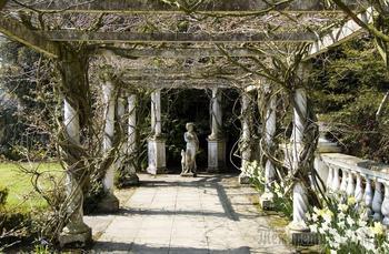 В старом саду... (Стих)