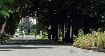 Крым. Симферополь. Ботанический сад КФУ. Июнь
