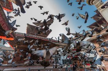 Неизвестные Гималаи в фотографиях