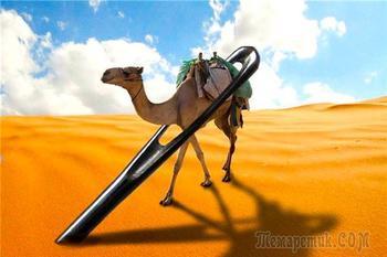 «Удобнее верблюду пройти сквозь игольные уши, нежели богатому войти в Царство Божие». Поговорим об этом?