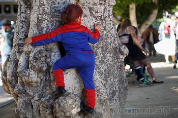 В российских детских садах начали запрещать костюмы иностранных героев