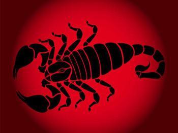 Скорпион-Крыса: женщина как представитель данного зодиакального сочетания