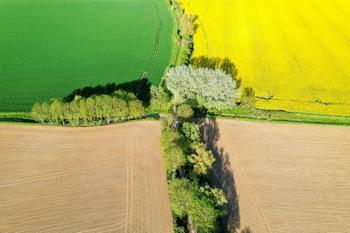 Немного фотографий: вид с воздуха