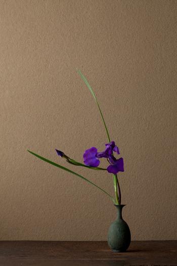 Икебана - цветы которые живут