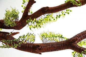 Стеклянные скульптуры от Жули Гонс