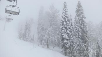 Горные лыжи - это здорово