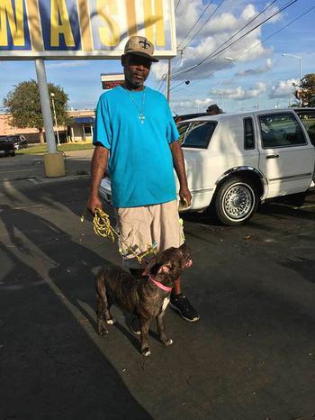 Самая заботливая в мире собака: Как уличный пёс стал помощником для 99-летней женщины