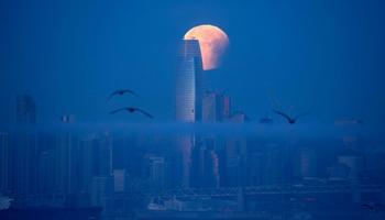 Немного фотографий: вечерняя экскурсия по городам мира