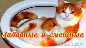 Улыбнитесь