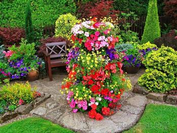 Клумба непрерывного цветения: украшение сада на все сезоны