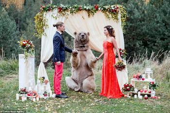 Бесстрашная любовь: свадебные церемонии в самых экстремальных и необычных локациях