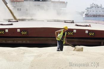 Российские власти одобрили введение квоты на экспорта зерна