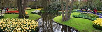 Парк цветов Кёкенкоф, Нидерланды
