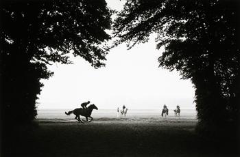 «Тёмная лошадка»: в мире конных скачек с Норманом Маускопфом