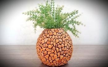 Стильная вещица из ореховой скорлупы