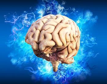 Фрукты и овощи для здоровья мозга