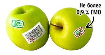 3 простых способа отличить ГМО от обычных продуктов