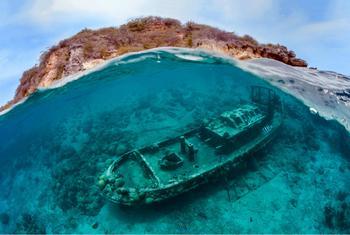 15 захватывающих вещей, которые таят в себе глубины морей и океанов
