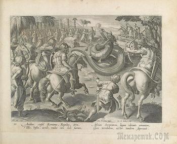 Драконы в книге 16 века.