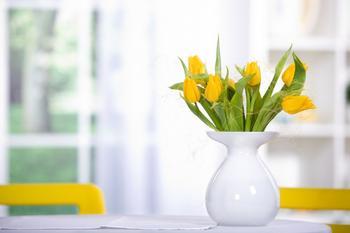 10 нетрадиционных способов избавиться от неприятных запахов в вашем доме