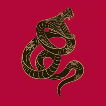 Змея-Дева женщина: характеристика личности по восточно-зодиакальному гороскопу