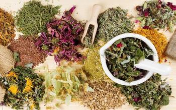 Какой чай поможет при аллергии?