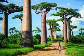 Достопримечательности Мадагаскара