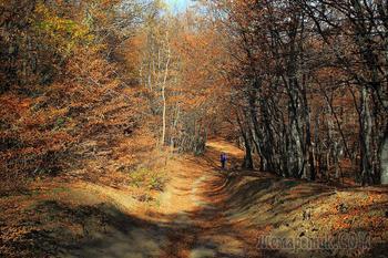 Крым. Чатыр-Даг. Кутузовское озеро. Прогулка по осени