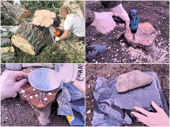 Действенный способ избавиться от поросли деревьев и кустарников на участке