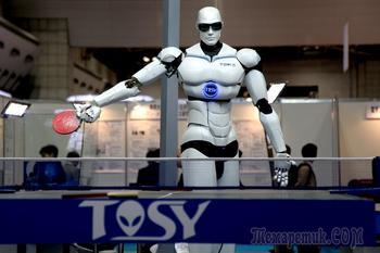 Прошлое, настоящее и будущее роботов