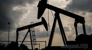 Самая богатая нефтяная компания мира пойдет на беспрецедентный шаг