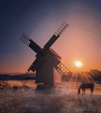 Просыпайся с восходом солнца... (Стих)