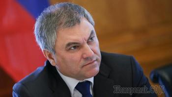 Володин: для возвращения российской делегации в ПАСЕ нет оснований