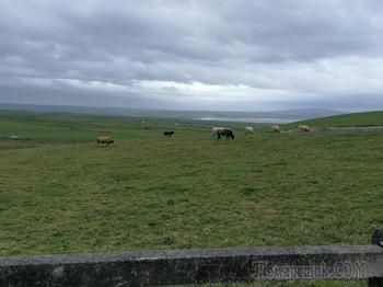 Неожиданное путешествие в Ирландию.Часть 2.Страна замков и изумрудных полей