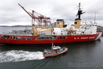 США отказались от учений в Арктике из-за нежелания просить РФ о помощи