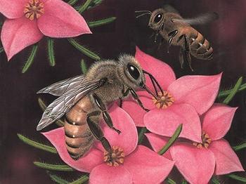 Пчёлы в искусстве и мифологии, в ювелирном искусстве и в жизни вообще...Часть 1-я