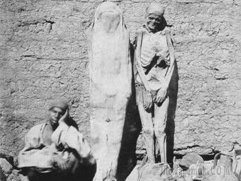 10 интересных фактов о мумиях