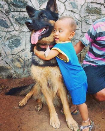 20 милых причин того, что вашему ребёнку нужна собака