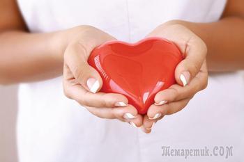 Донорство крови: важность, рекомендации и противопоказания