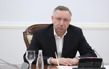 Выборы в Петербурге: Дмитриевой среди кандидатов не будет