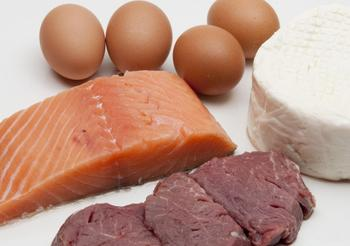 Польза и источники белка