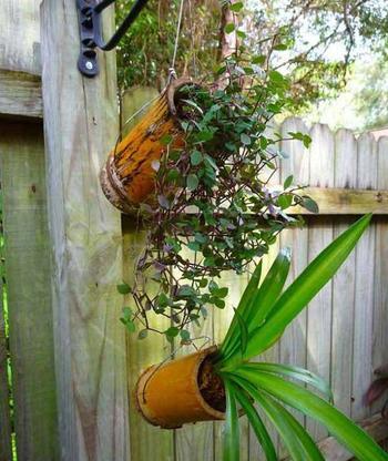 Оригинальные идеи оформления дома при помощи бамбука