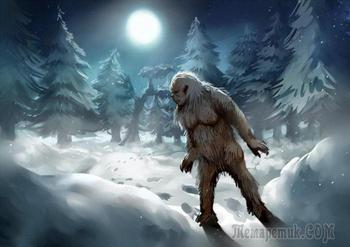 Гималайский йети: действительно ли снежный человек обитает в самой высокой горной системе мира?