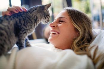 Почему кошка топчется на вас лапками: 3 причины