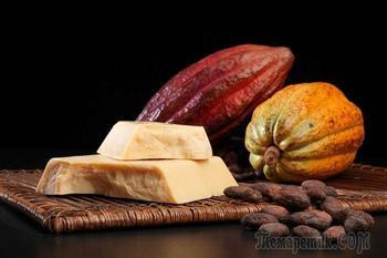 Масло какао: уникальные свойства продукта для лица